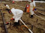 Principles of hospital sewage disinfectant treatment